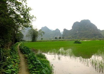 lilys-travel-agency-lilys-tours-halong-bay-sapa-1-of-17